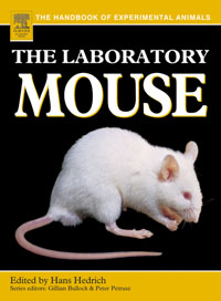 The Laboratory Mouse, bluetooth mouse designer