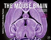 The Mouse Brain in Stereotaxic Coordinates bluetooth mouse designer