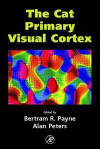 The Cat Primary Visual Cortex, cat сапоги