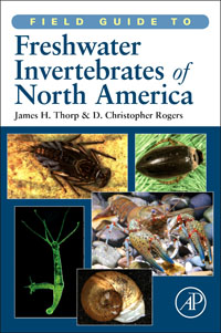Field Guide to Freshwater Invertebrates of North America, a guide to common freshwater crustacean zooplankton of egypt
