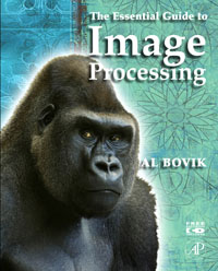 The Essential Guide to Image Processing, пуф dreambag кубик василек
