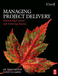 Managing Project Delivery: Maintaining Control and Achieving Success,