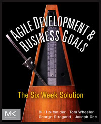 Agile Development & Business Goals, ecosystems nexus millennium development goals