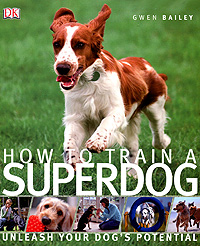How to Train a Superdog boy most likely to
