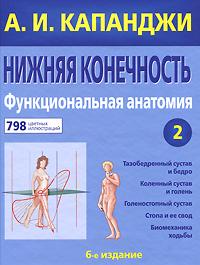 Капанджи А.И. Нижняя конечность. Функциональная анатомия. Том 2