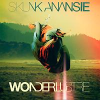 Skunk Anansie Skunk Anansie. Wonderlustre skunk funk повседневные брюки