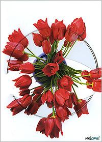 Tulips автоакустика art sound alx 52