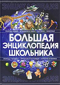 Купить Большая энциклопедия школьника
