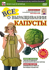 Все о выращивании капусты все о выращивании капусты
