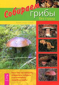 Собираем грибы без страха. Александр Шваб