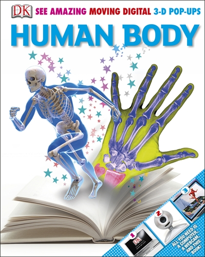 Human Body 3-D Pops lg on the body