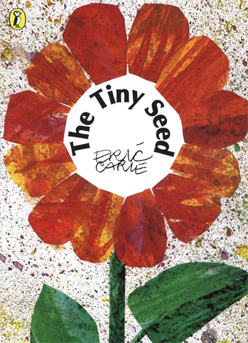 The Tiny Seed travels of the zephyr journey around the world