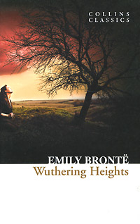 Wuthering Heights the bronte sisters three novels jane eyre wuthering heights and agnes grey