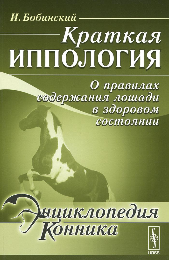 Краткая иппология. О правилах содержания лошади в здоровом состоянии.