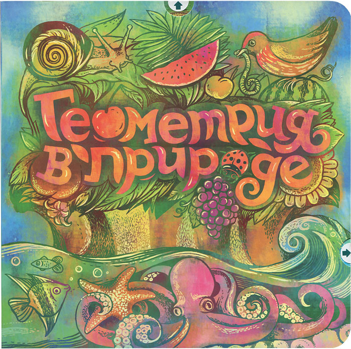 Zakazat.ru: Геометрия в природе. Книжка-игрушка. Надежда Сивина