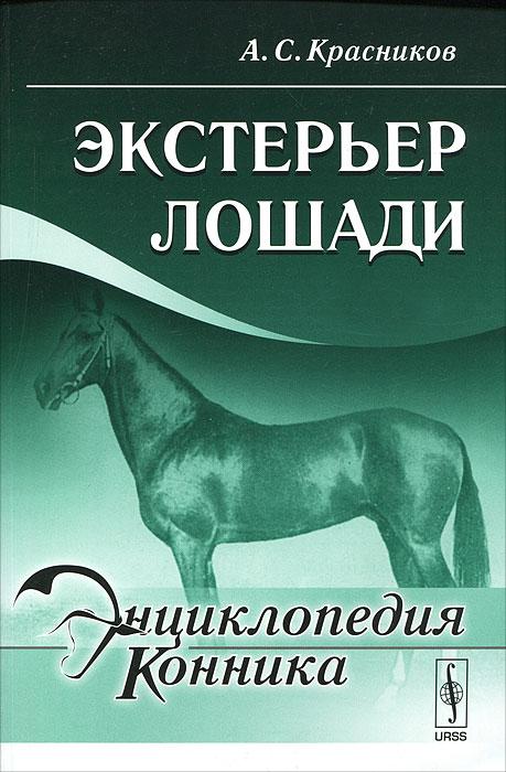 Экстерьер лошади.