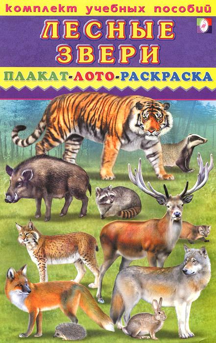 Комплект учебных пособий. Лесные звери. Плакат. Лото. Раскраска тактильное лото животные