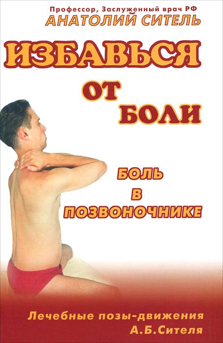 Анатолий Ситель Избавься от боли. Боль в позвоночнике валентин дикуль за компьютером без боли в спине