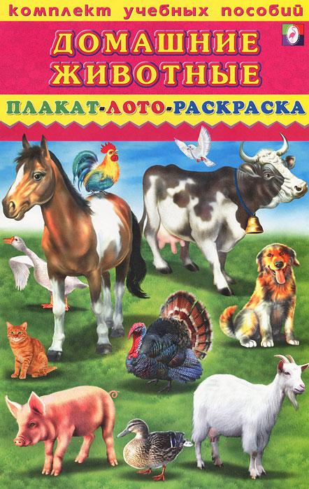 Домашние животные. Плакат, лото, раскраска тактильное лото животные