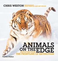 Animals on the Edge the animals the animals the complete animals 2 cd