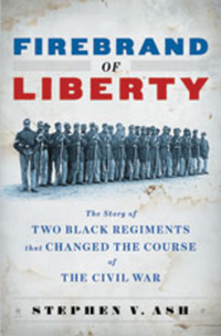 Firebrand of Liberty – The Story of Two Black Regiments that Changed the Course of the Civil War the demands of liberty – civil society in france since the revolution