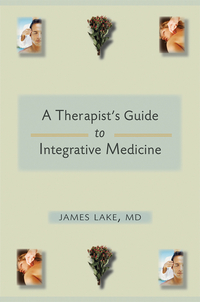 Integrative Mental Health Care – A Therapist?s Guide david buckham executive s guide to solvency ii