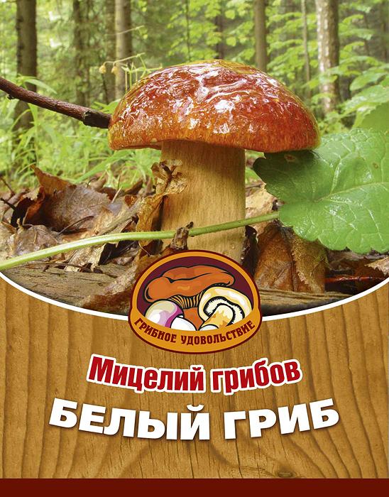 Мицелий грибов Белый гриб, субстрат. Объем 60 мл мицелий грибов вешенка рожковидная на 16 древесных палочках