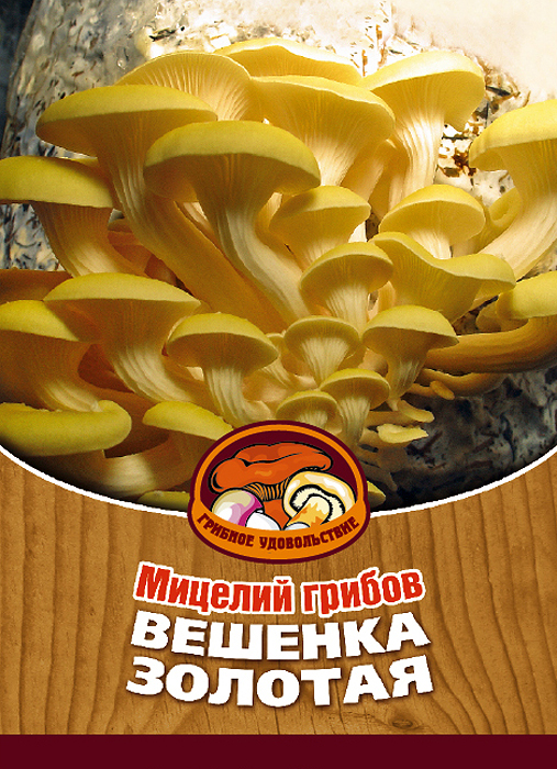 Мицелий грибов Вешенка золотая, 16 древесных палочек10021Вешенка золотая встречается исключительно на Дальнем Востоке. Это один из любимых грибов жителей Приморского края. Благодаря мицелию грибов Вешенка золотая теперь вы без труда сможете вырастить любимые грибы у себя в саду или дома. И уже через 2-4 месяца после посадки у вас появится первый урожай грибов. За один год можно собрать от 3 до 6 кг грибов с каждого бревна. Для того чтобы вырастить грибы вам понадобится: мицелий Грибное удовольствие, бревно или палка лиственных пород (бук, тополь, береза, ива, клен, рябина и плодовые деревья), дрель. Благоприятное время для посадки мицелия Вешенка золотая - в природных условиях с мая по сентябрь, в помещении - круглый год.Плодоносят мицелии в среднем от 3 до 5 лет, в зависимости от сорта грибов. Характеристики:Материал:древесная палочка. Размер упаковки:11 см х 15,5 см. Артикул:10021.