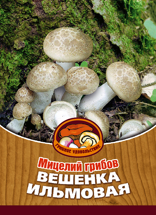 """Мицелий грибов """"Вешенка ильмовая"""", 16 древесных палочек"""