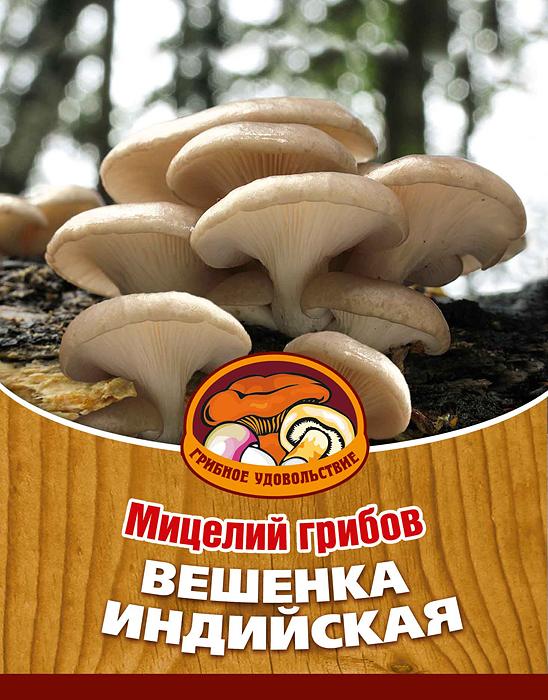 Мицелий грибов Вешенка индийская, 16 древесных палочек10022Вешенка индийская это самая вкусная среди всех вешенок, есть ее можно в тушеном, жареном, маринованном виде, в пирогах и супах; сушить и замораживать. Благодаря мицелию грибов Вешенка индийская теперь вы без труда сможете вырастить любимые грибы у себя в саду или дома. И уже через 3-6 месяцев после посадки у вас появится первый урожай грибов. За один год можно собрать от 3 до 6 кг с каждого бревна.Для того чтобы вырастить грибы вам понадобится: мицелий Грибное удовольствие, бревно или палка лиственных пород (бук, тополь, береза, ива, клен, рябина и плодовые деревья), дрель.Благоприятное время для посадки мицелия Вешенка индийская - в природных условиях с апреля по октябрь, в помещении - круглый год. Плодоносят мицелии в среднем от 3 до 5 лет, в зависимости от сорта грибов. Характеристики:Материал:древесная палочка. Размер упаковки:11 см х 15,5 см. Артикул:10022.