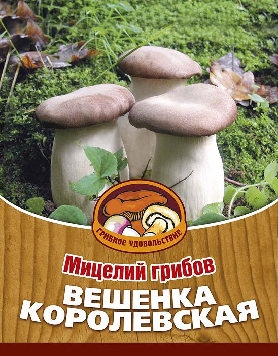 Мицелий грибов Вешенка королевская, 16 древесных палочек10027Вешенка королевская весьма популярный гриб в Восточной Азии, который постепенно завоевывает Европу. Гриб обладает высокими кулинарными свойствами: его можно жарить, отваривать для первых блюд и салатов, жарить на гриле.Благодаря мицелию грибов Вешенка королевская теперь вы без труда сможете вырастить любимые грибы у себя в саду или дома. И уже через 3-6 месяцев после посадки у вас появится первый урожай грибов. За один год можно собрать от 3 до 6 кг с каждого бревна.Для того чтобы вырастить грибы вам понадобится: мицелий Грибное удовольствие, бревно лиственных пород (осина, береза, тополь), дрель.Благоприятное время для посадки мицелия Вешенка королевская - в природных условиях с апреля по октябрь, в помещении - круглый год. Плодоносят мицелии в среднем от 3 до 5 лет, в зависимости от сорта грибов. Характеристики:Материал:древесная палочка. Размер упаковки:11 см х 15,5 см. Артикул:10027.