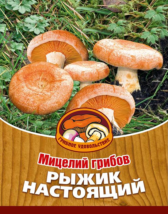 """Рыжик - деликатесный гриб, который употребляют, как правило, в соленом виде. Также очень вкусны жареные рыжики и суп из них. Благодаря мицелию грибов """"Рыжик настоящий"""" теперь вы без труда сможете вырастить любимые грибы у себя в саду или дома. И уже через год после посадки у вас появится первый урожай грибов. За один год можно собрать 5-15 штук с одного дерева.  Для того чтобы вырастить грибы вам понадобится: мицелий """"Грибное удовольствие"""", дерево - взрослая сосна или ель, грунт для комнатных растений, лопата, мох, листовой опад.  Благоприятное время для посадки мицелия """"Рыжик настоящий"""" - с мая по сентябрь.   Плодоносят мицелии в среднем от 3 до 5 лет, в зависимости от сорта грибов.   Характеристики:  Материал:  субстрат. Размер упаковки:  11 см х 15,5 см. Объем:  60 мл. Артикул:  10018."""
