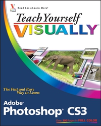 Teach Yourself VISUALLYTM Adobe® Photoshop® CS3 mastering photoshop layers