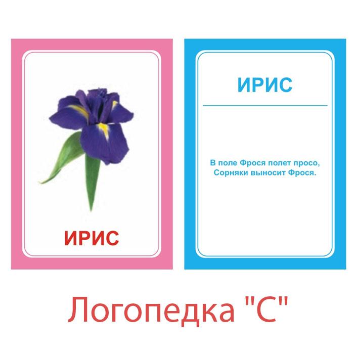 Вундеркинд с пеленок Обучающие карточки Логопедка С говорим с пеленок