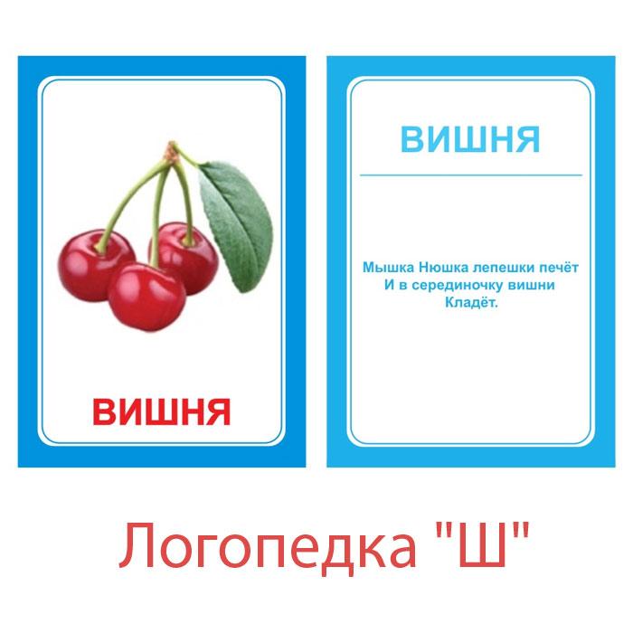Вундеркинд с пеленок Обучающие карточки Логопедка Ш говорим с пеленок