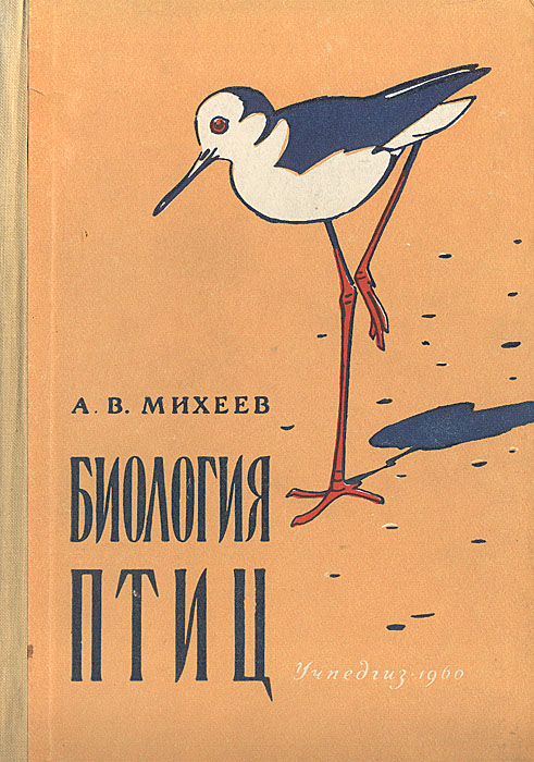 Биология птиц