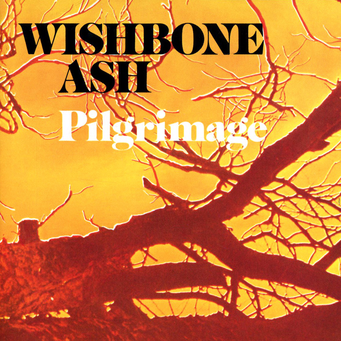 Wishbone Ash Wishbone Ash. Pilgrimage стул wishbone кожаный