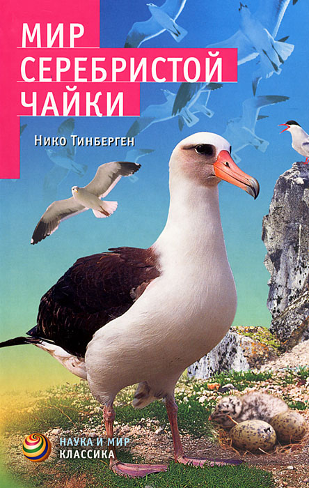 Нико Тинберген Мир серебристой чайки правило 69 для толстой чайки самокат