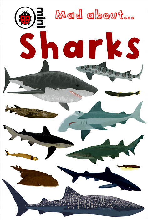 Mad about... Sharks
