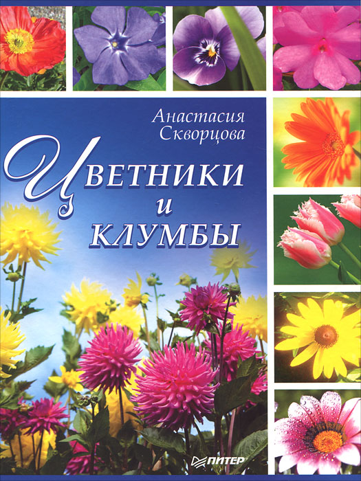 АнастасияСкворцова Цветники и клумбы