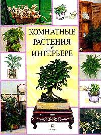 Комнатные растения в интерьере nobbaro туфли комнатные