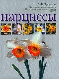 Л. В. Завадская Нарциссы наборы для выращивания растений вырасти дерево набор для выращивания ель канадская голубая