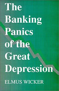 The Banking Panics of the Great Depression richard duncan the new depression the breakdown of the paper money economy