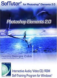 SofTutor for Photoshop Elements 2.0 (Windows Only) mastering photoshop layers