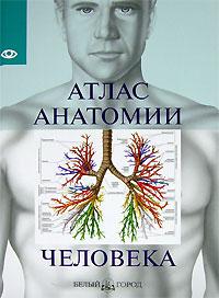 Атлас анатомии человека анатомия человека русско латинский атлас