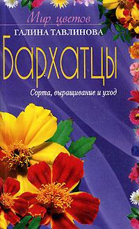 Г. К. Тавлинова Бархатцы как цветы в теплице г воронеже