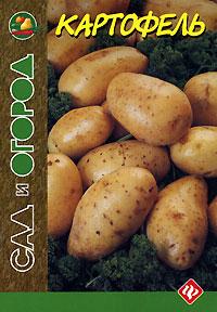 Картофель южаков с д лекарственные средства