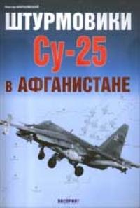 Виктор Марковский Штурмовики Су-25 в Афганистане