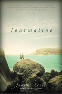 Tourmaline: A Novel the lonely polygamist – a novel
