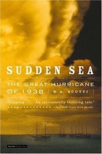 Sudden Sea : The Great Hurricane of 1938 sea of spa крем морковный универсальный 500 мл
